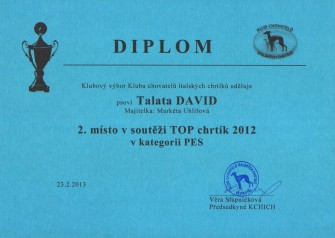 talata-david_top-chrtik-2012.jpg